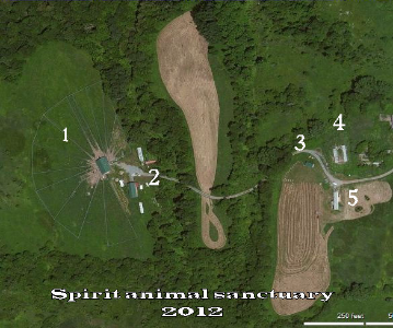Spirit animal sanctuary in 2012